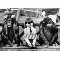 Photo poster Drysdale Monkey