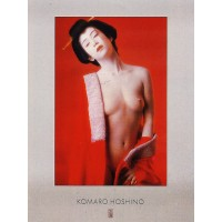 Painting poster Nu rouge by Hoshino